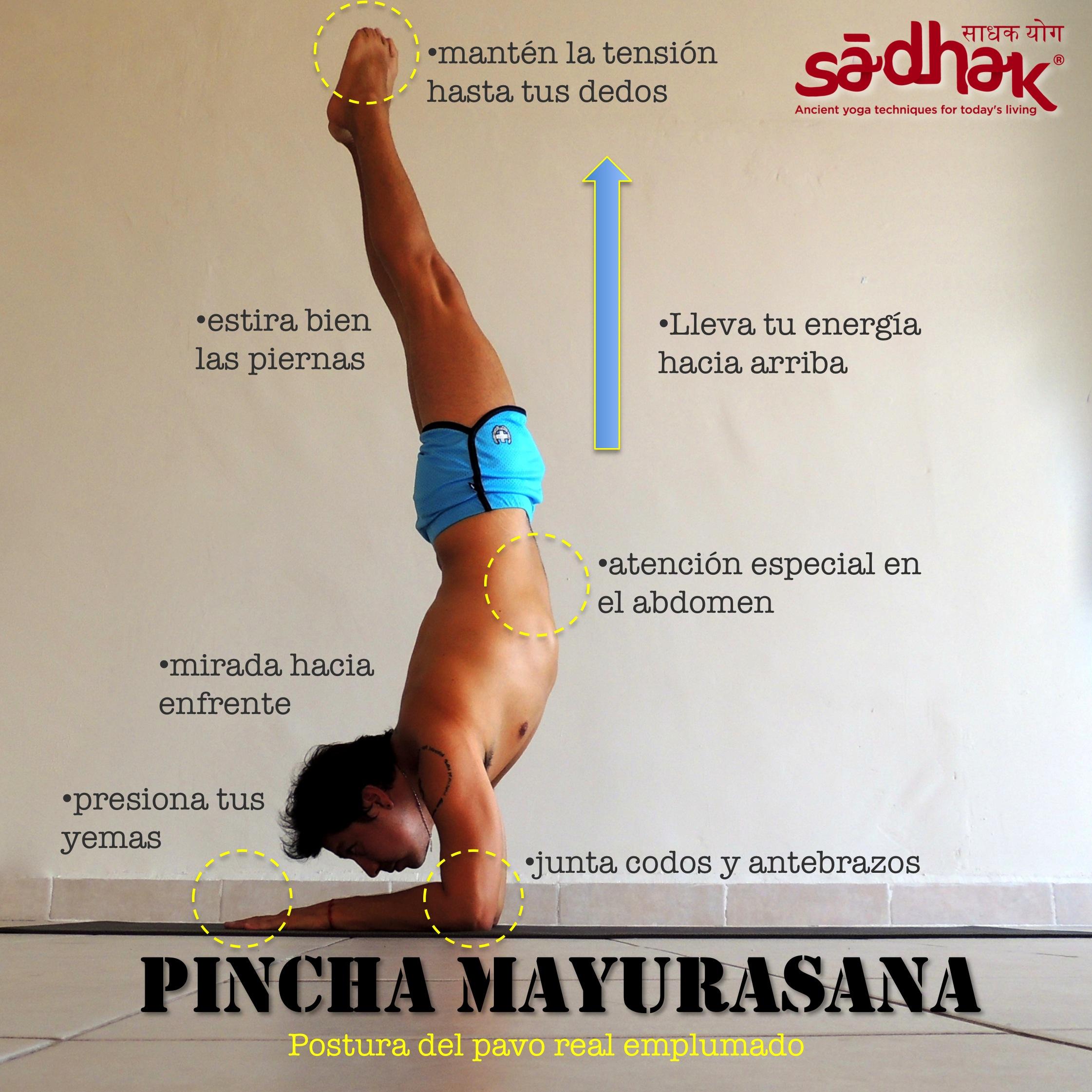 2014.09.15 Pincha Mayurasana