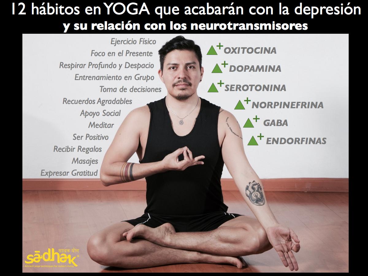 Sādhak Yoga Institute – Sādhak Yoga institute. Somos una de las ...
