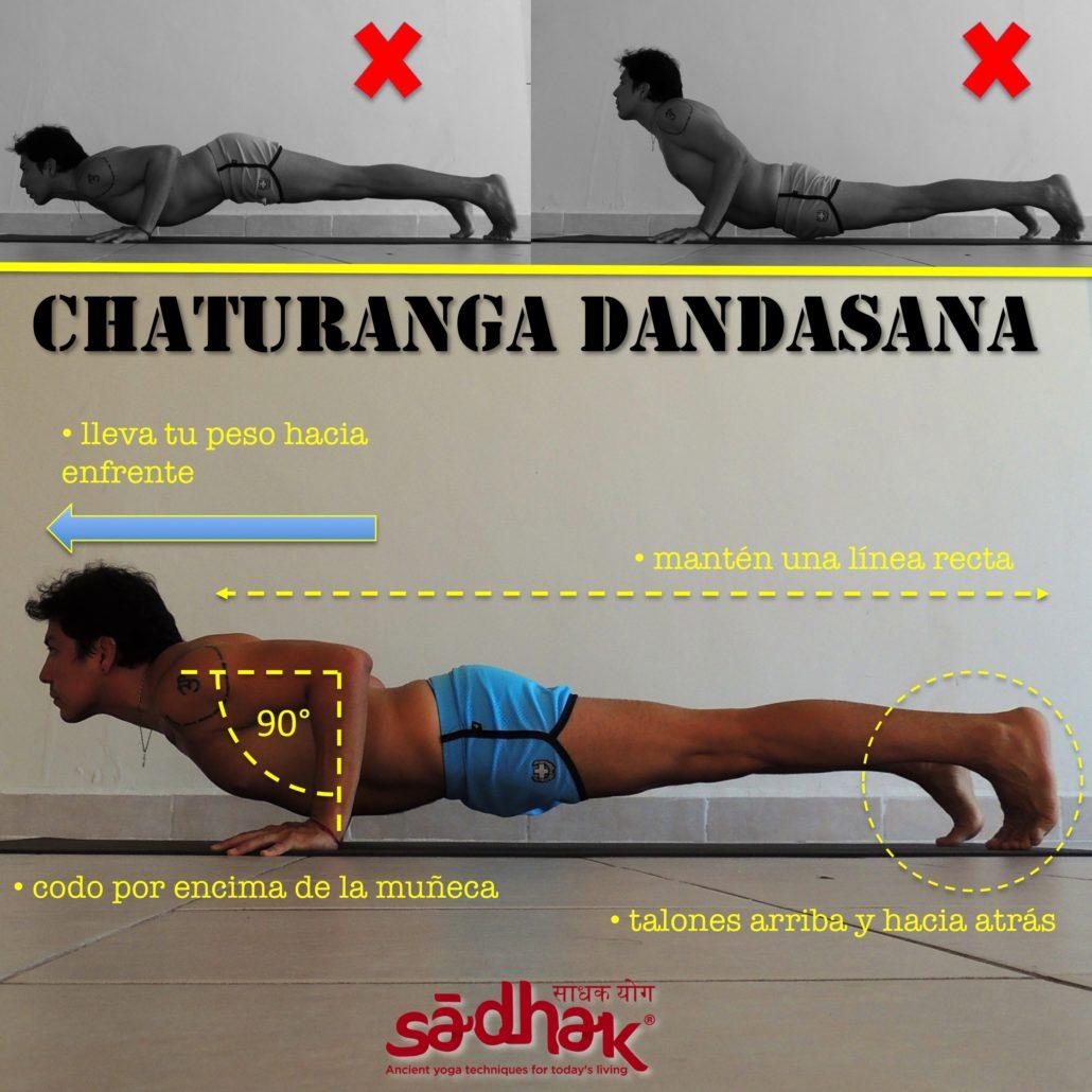 2014.08.07 Chaturanga dandasana