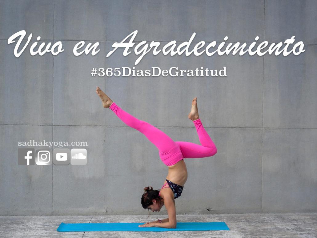 Cynthia 365 dias de gratutid vivo en agradecimiento intencion del mes