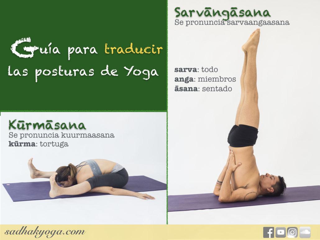 guia-para-traducir-las-posturas-de-yoga